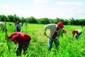 Venezuelan farmers to benefit from increased production network